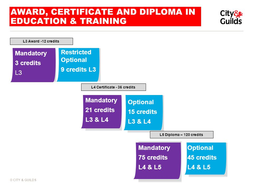 © CITY & GUILDS LEVEL 5 STAND ALONE DIPLOMA L5 Diploma standalone award English: Literacy Standalone 45 credits L5 English: ESOL Standalone 45 credits L5 Mathematics Standalone 45 credits L5 Disabled Learners Standalone 45 credits L5 Combined Literacy and ESOL 60 credits