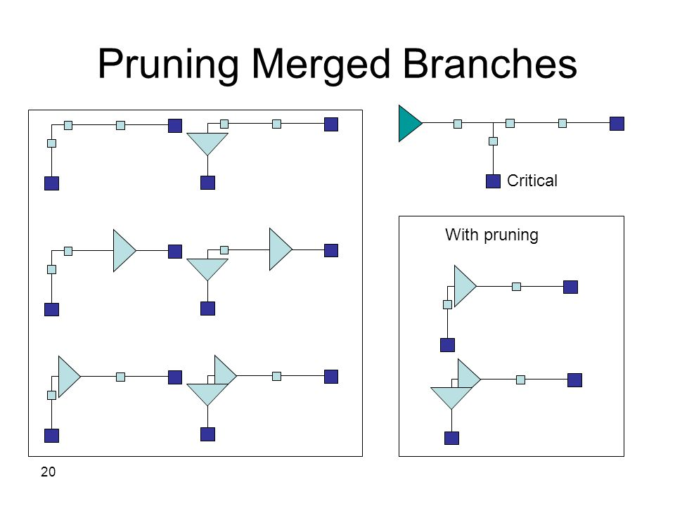 20 Pruning Merged Branches Critical With pruning