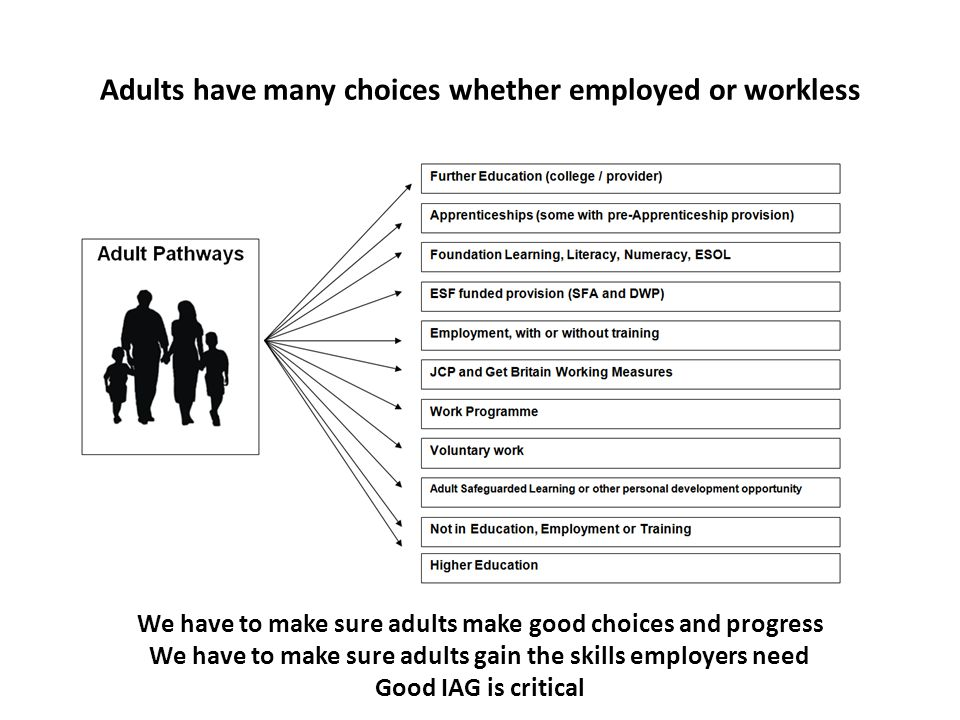 Adults have many choices whether employed or workless We have to make sure adults make good choices and progress We have to make sure adults gain the skills employers need Good IAG is critical