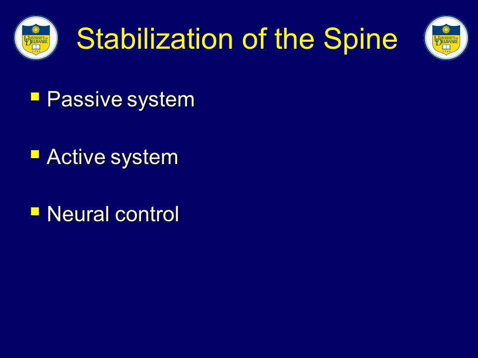Discussion  Electrical stimulation has been successfully added to programs of lumbar stabilization with figure skaters  There were no negative effects to the high intensity stimulation treatments fusionfusion stress responsestress response