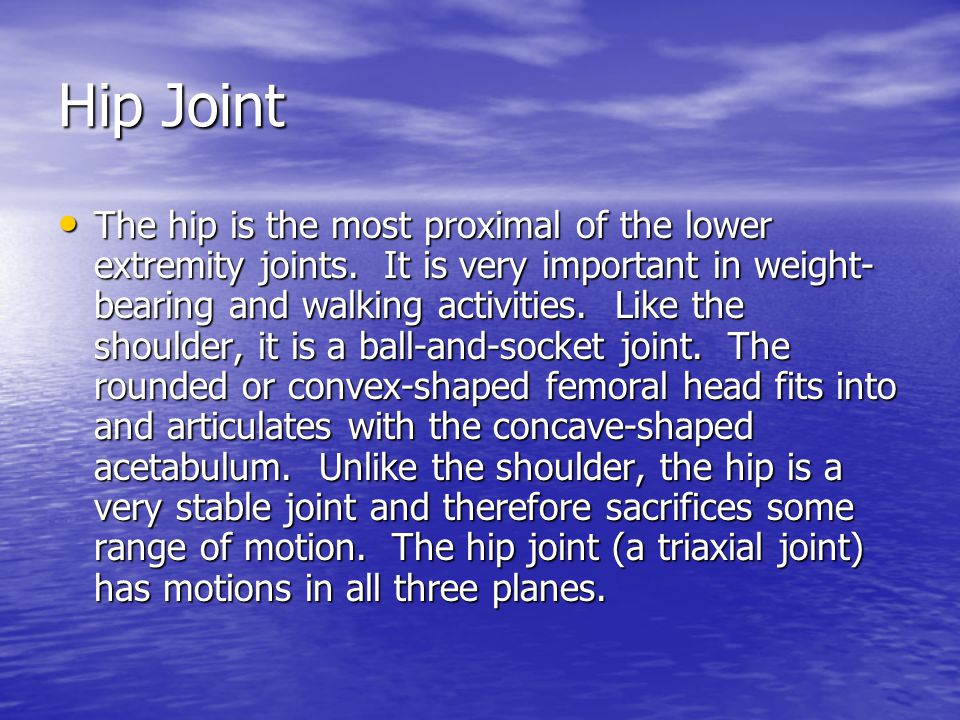 The hip is the most proximal of the lower extremity joints.