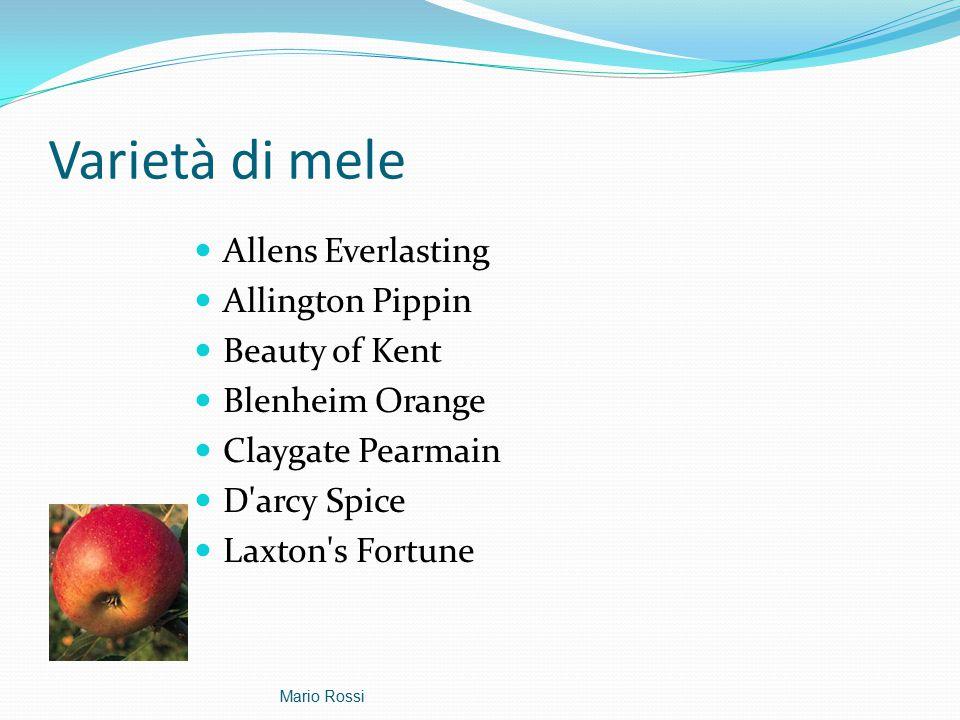 Varietà di mele Allens Everlasting Allington Pippin Beauty of Kent Blenheim Orange Claygate Pearmain D arcy Spice Laxton s Fortune Mario Rossi