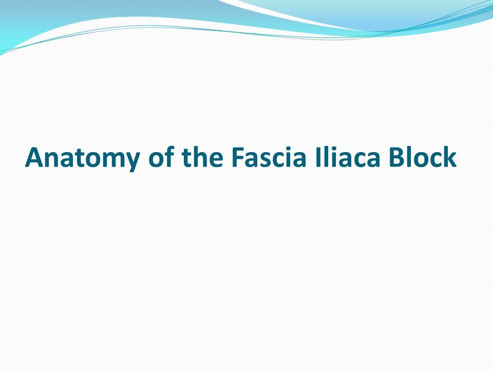 Anatomy of the Fascia Iliaca Block
