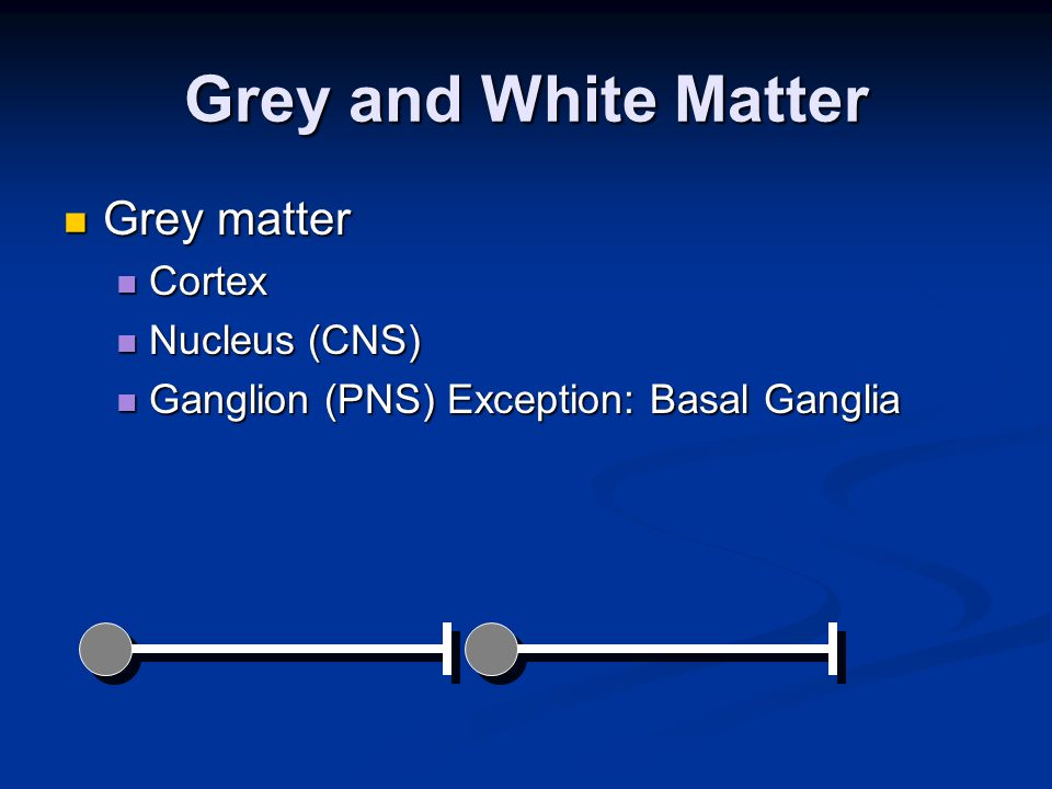 Grey and White Matter Grey matter Grey matter Cortex Cortex Nucleus (CNS) Nucleus (CNS) Ganglion (PNS) Exception: Basal Ganglia Ganglion (PNS) Exception: Basal Ganglia