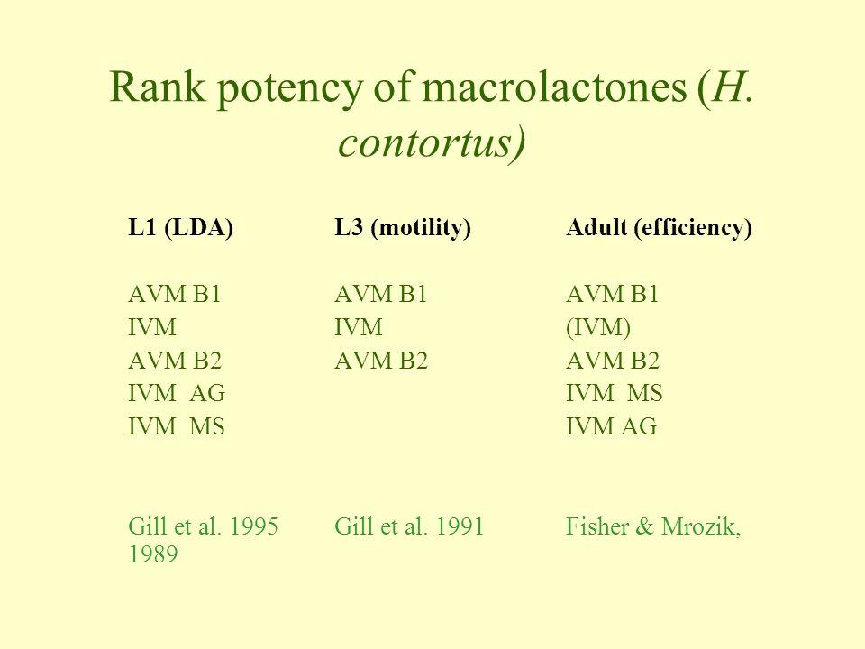 Rank potency of macrolactones (H.