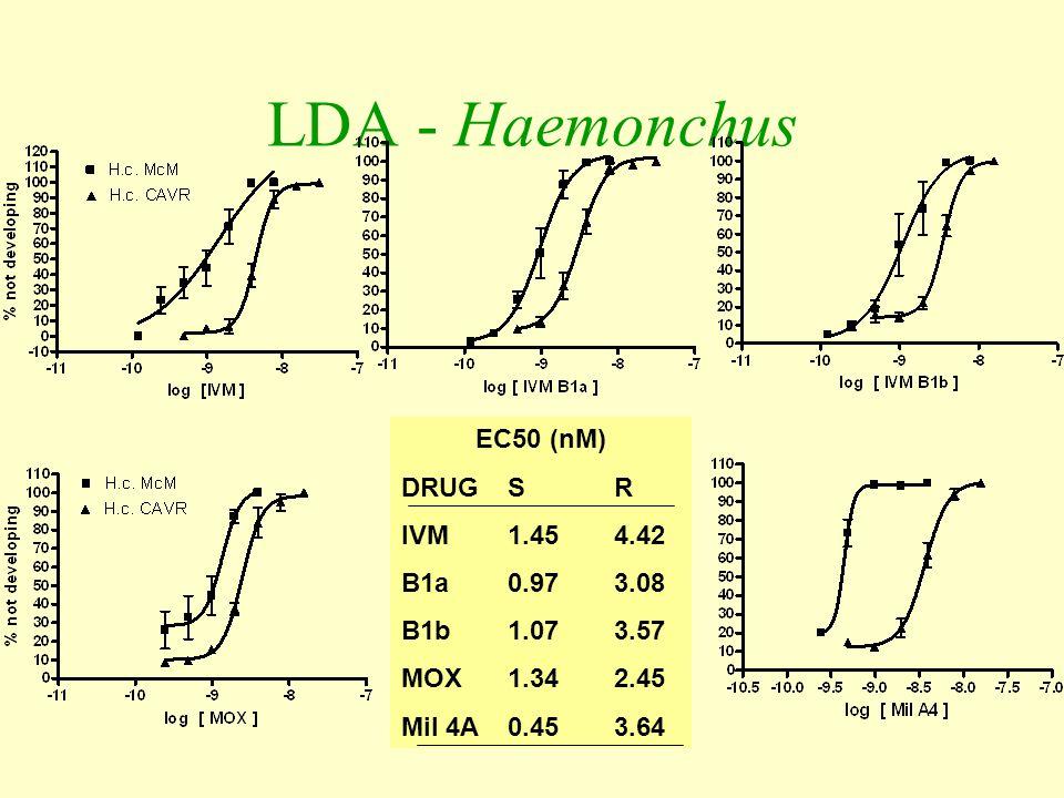 LDA - Haemonchus EC50 (nM) DRUGSR IVM1.454.42 B1a0.973.08 B1b1.073.57 MOX1.342.45 Mil 4A0.453.64