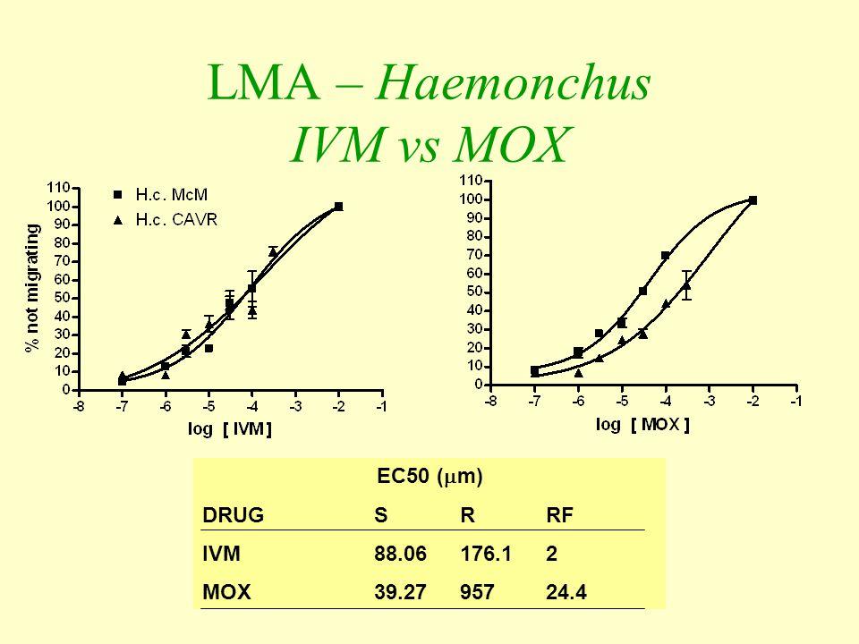 LMA – Haemonchus IVM vs MOX EC50 (  m) DRUGSRRF IVM88.06176.12 MOX39.2795724.4