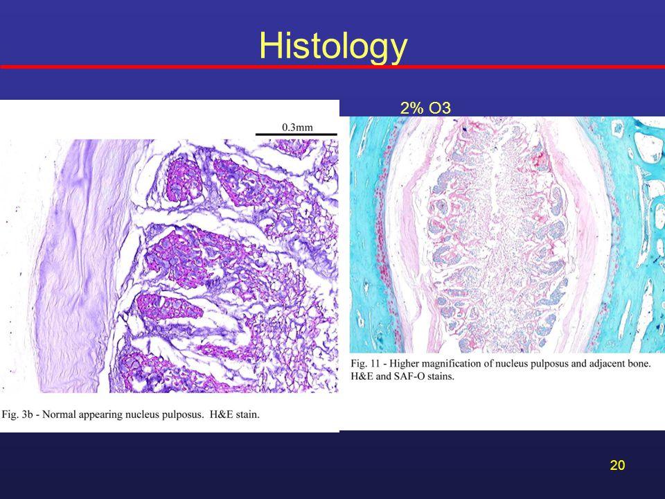20 Histology 2% O3