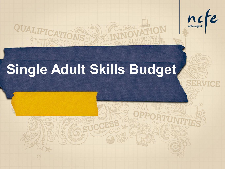 Single Adult Skills Budget