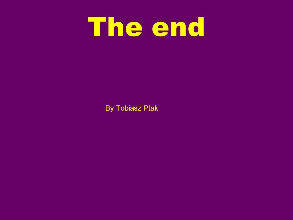 The end By Tobiasz Ptak