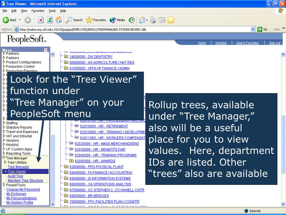 Rollup trees, available under Tree Manager, also will be a useful place for you to view values.