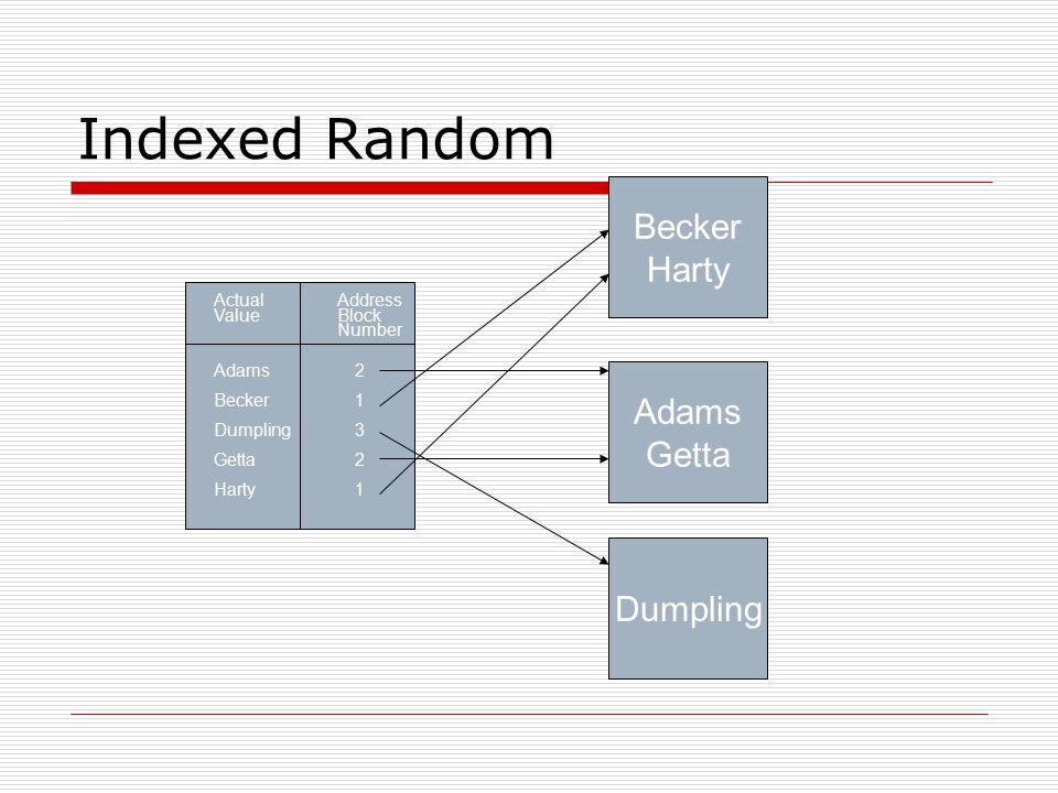 Indexed Random Address Block Number 2132121321 Actual Value Adams Becker Dumpling Getta Harty Becker Harty Adams Getta Dumpling