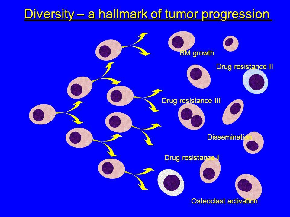 Diversity – a hallmark of tumor progression BM growth Dissemination Osteoclast activation Drug resistance I Drug resistance II Drug resistance III