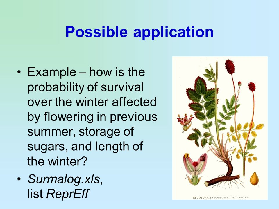 Possible application Example – how is the probability of survival over the winter affected by flowering in previous summer, storage of sugars, and len