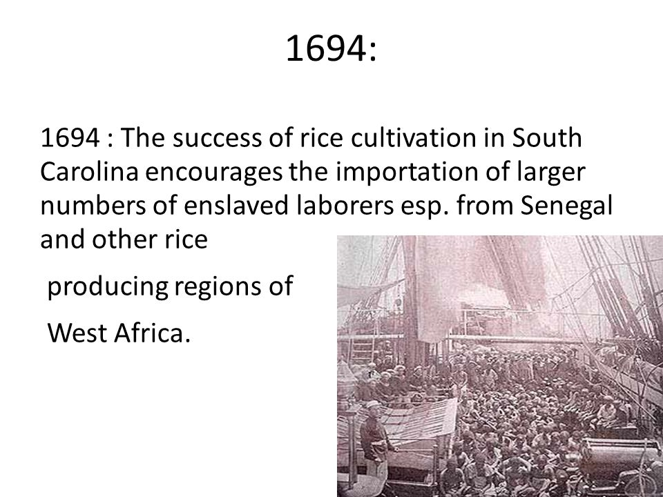 1694: 1694 : The success of rice cultivation in South Carolina encourages the importation of larger numbers of enslaved laborers esp.