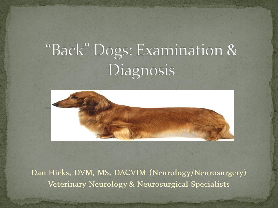 Dan Hicks, DVM, MS, DACVIM (Neurology/Neurosurgery) Veterinary Neurology & Neurosurgical Specialists