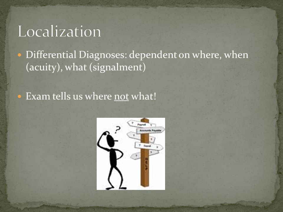 Differential Diagnoses: dependent on where, when (acuity), what (signalment) Exam tells us where not what!