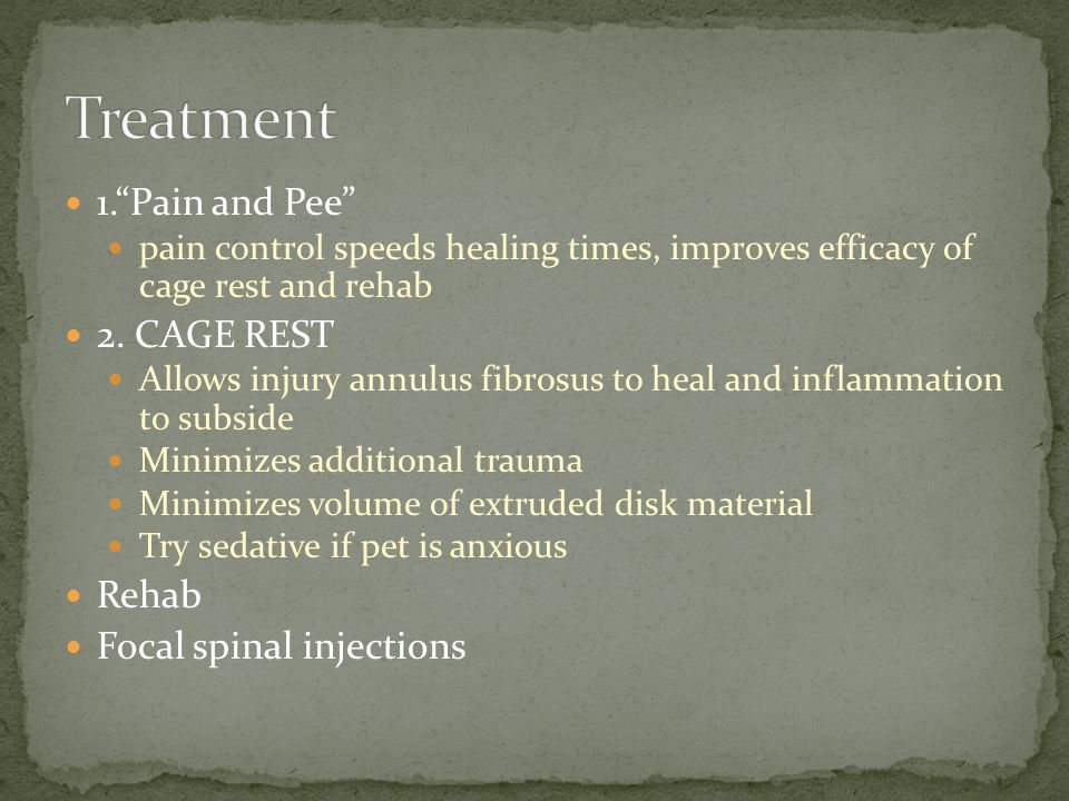 1. Pain and Pee pain control speeds healing times, improves efficacy of cage rest and rehab 2.