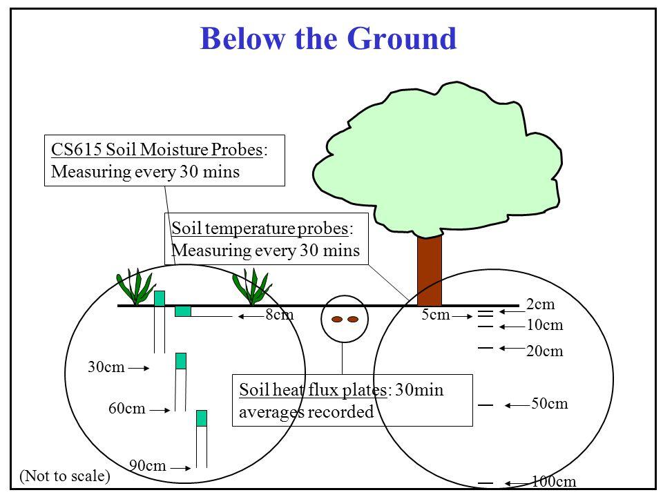 Below the Ground 30cm 60cm 90cm 8cm (Not to scale) CS615 Soil Moisture Probes: Measuring every 30 mins Soil heat flux plates: 30min averages recorded
