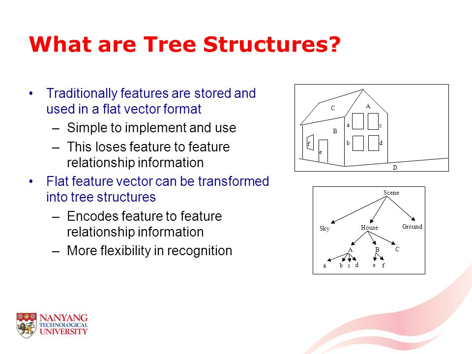 What are Tree Structures.