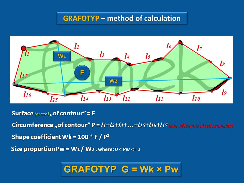 "l 15 l 17 l6l6 l5l5 l4l4 l3l3 l2l2 l1l1 l 13 l 12 l 11 l 10 l9l9 l8l8 l7l7 l 16 l 14 Circumference ""of contour P = l 1 +l 2 +l 3 +…+l 15 +l 16 +l 17 (sum of lenghts of red segments) Shape coefficient Wk = 100 * F / P² Size proportion Pw = W 1 / W 2, where: 0 < Pw <= 1 Surface (green) ""of contour = F GRAFOTYP G = Wk × Pw W2W2W2W2 W2W2W2W2 W1W1W1W1 W1W1W1W1 F GRAFOTYP – method of calculation"