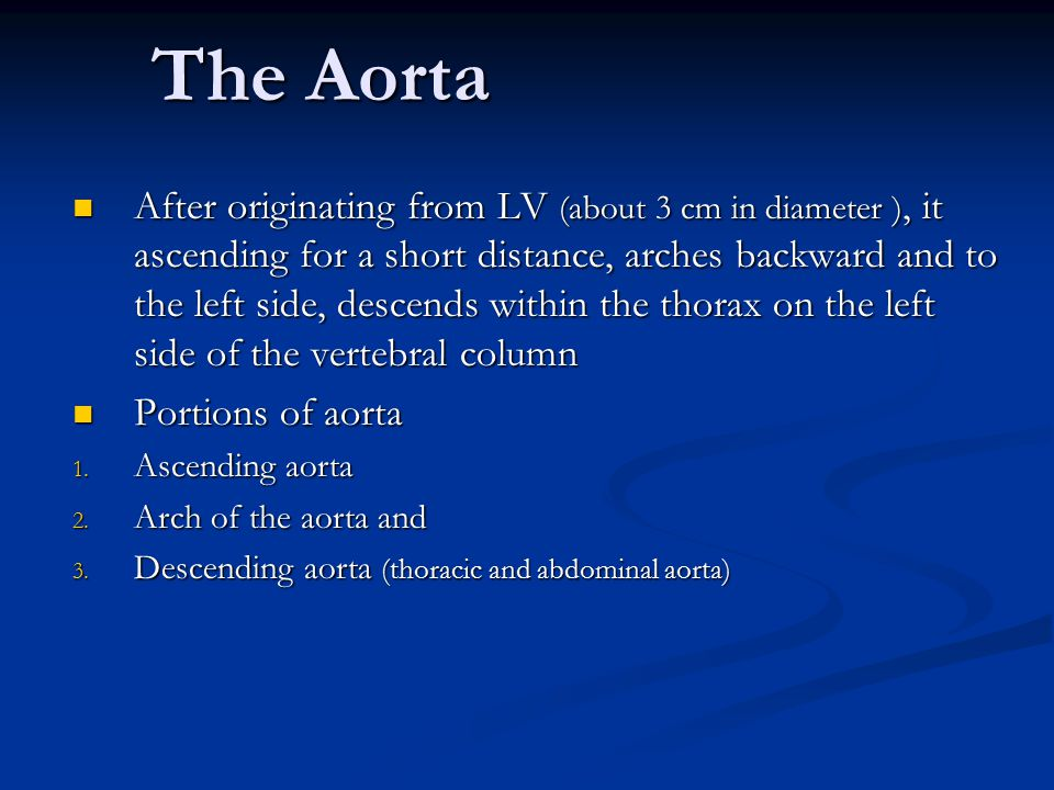The Aorta After originating from LV (about 3 cm in diameter ), it ascending for a short distance, arches backward and to the left side, descends within the thorax on the left side of the vertebral column After originating from LV (about 3 cm in diameter ), it ascending for a short distance, arches backward and to the left side, descends within the thorax on the left side of the vertebral column Portions of aorta Portions of aorta 1.