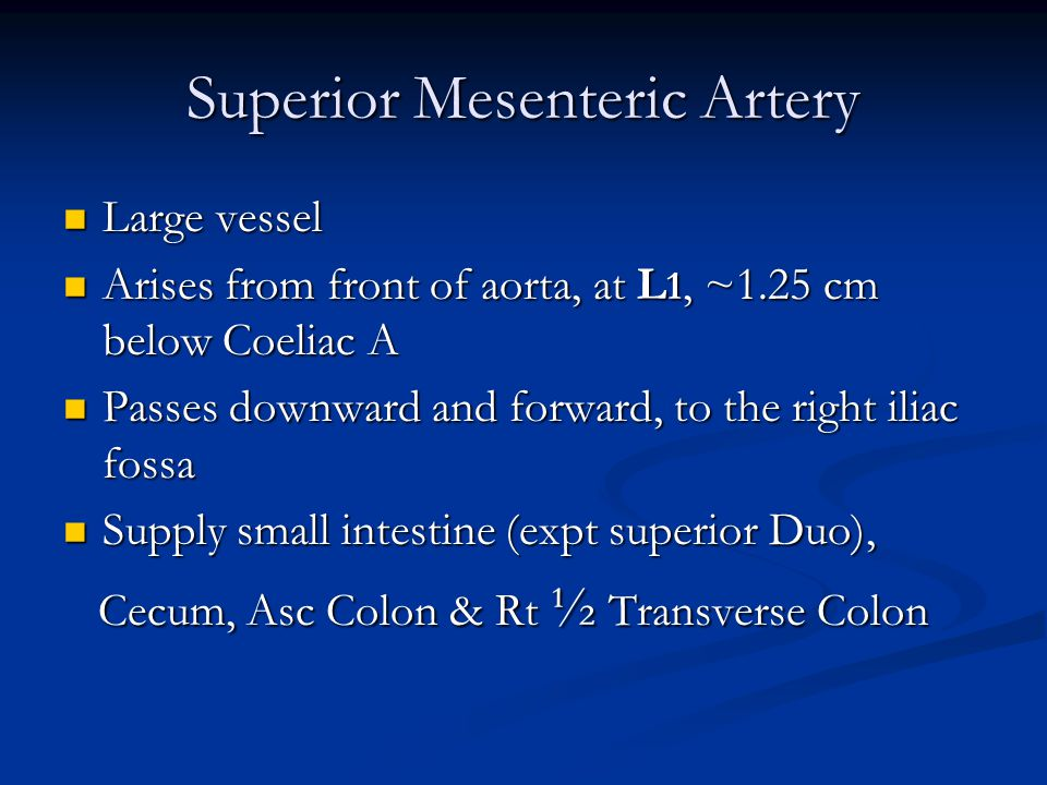 Superior Mesenteric Artery Large vessel Large vessel Arises from front of aorta, at L 1, ~1.25 cm below Coeliac A Arises from front of aorta, at L 1, ~1.25 cm below Coeliac A Passes downward and forward, to the right iliac fossa Passes downward and forward, to the right iliac fossa Supply small intestine (expt superior Duo), Supply small intestine (expt superior Duo), Cecum, Asc Colon & Rt ½ Transverse Colon Cecum, Asc Colon & Rt ½ Transverse Colon