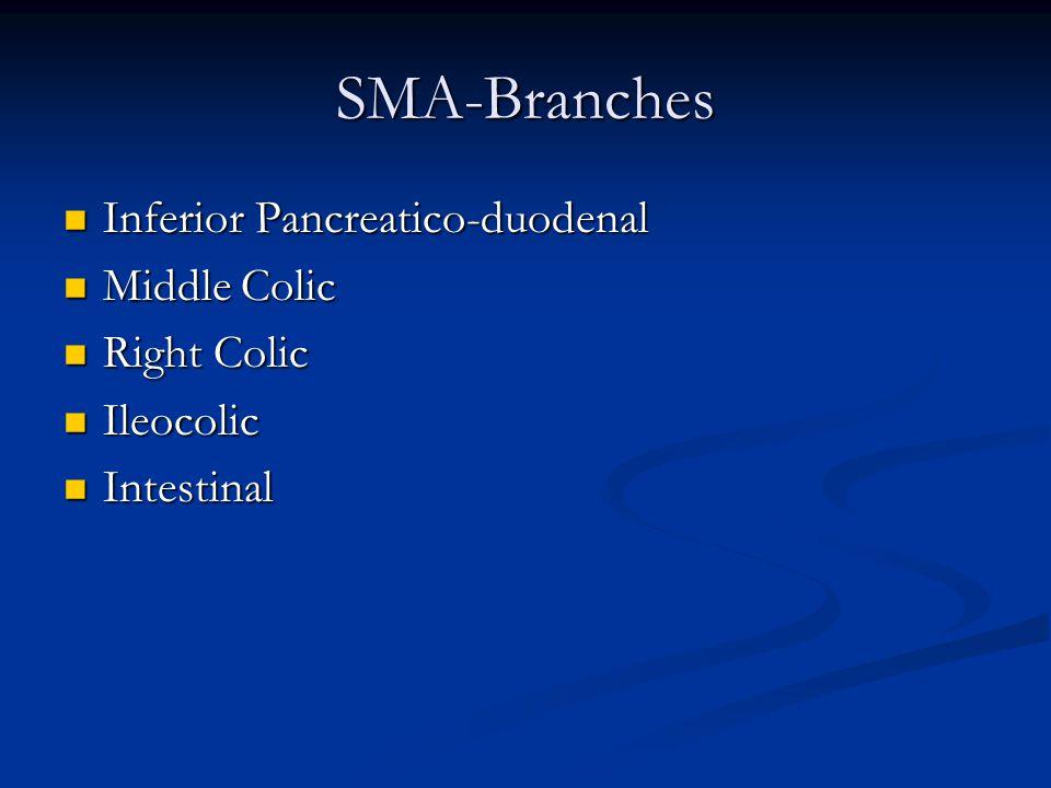 SMA-Branches Inferior Pancreatico-duodenal Inferior Pancreatico-duodenal Middle Colic Middle Colic Right Colic Right Colic Ileocolic Ileocolic Intestinal Intestinal