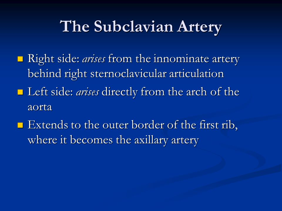 The Subclavian Artery Right side: arises from the innominate artery behind right sternoclavicular articulation Right side: arises from the innominate artery behind right sternoclavicular articulation Left side: arises directly from the arch of the aorta Left side: arises directly from the arch of the aorta Extends to the outer border of the first rib, where it becomes the axillary artery Extends to the outer border of the first rib, where it becomes the axillary artery