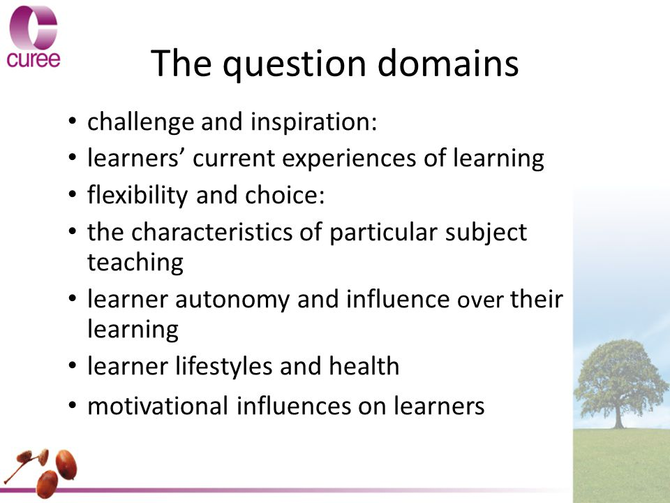 The question domains challenge and inspiration: learners' current experiences of learning flexibility and choice: the characteristics of particular subject teaching learner autonomy and influence over their learning learner lifestyles and health motivational influences on learners