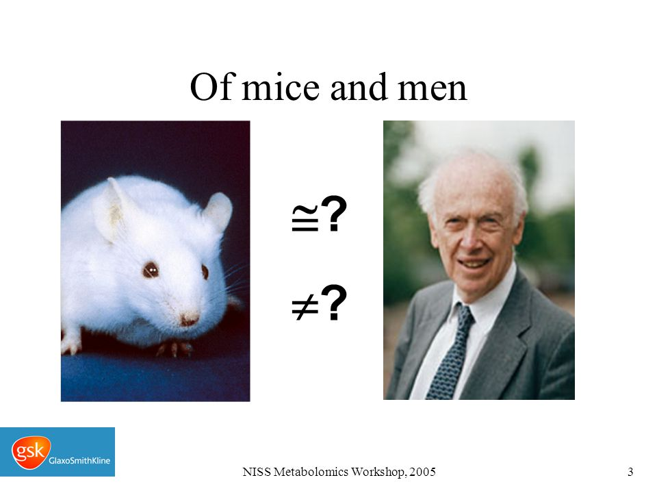 NISS Metabolomics Workshop, 20053 Of mice and men ????
