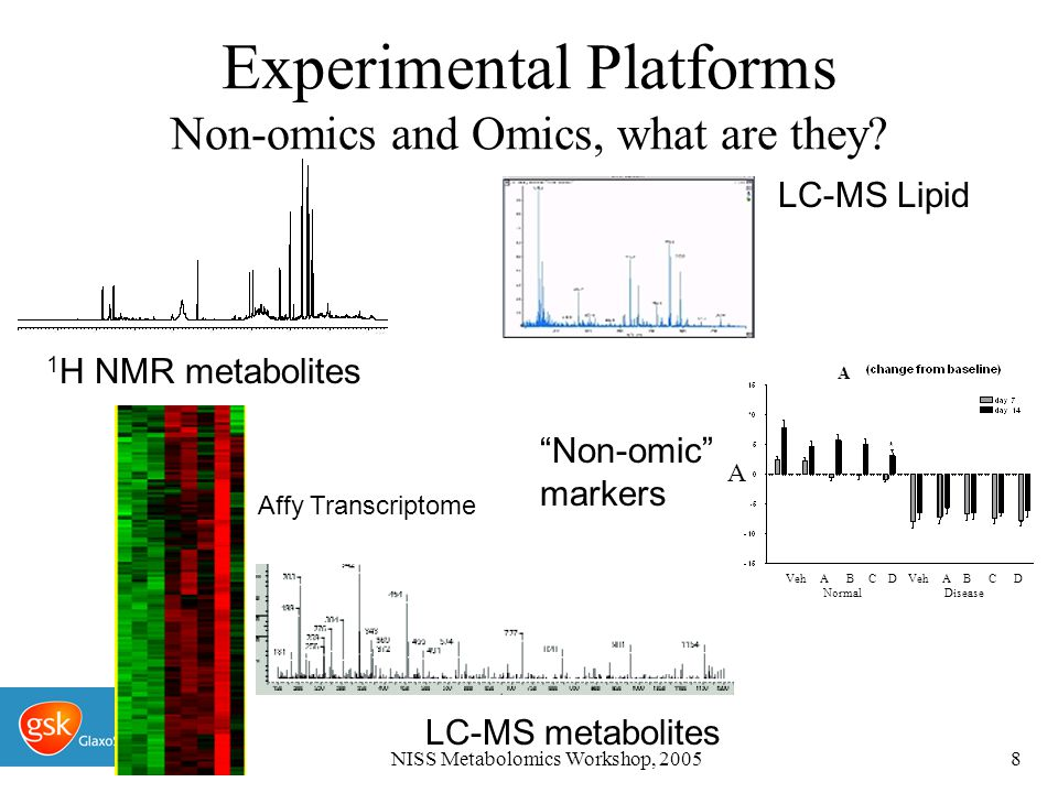 NISS Metabolomics Workshop, 20059 Experimental Platforms Non-omics and Omics, what are they.