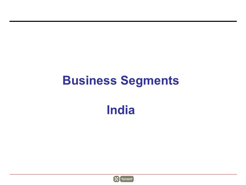 Business Segments India