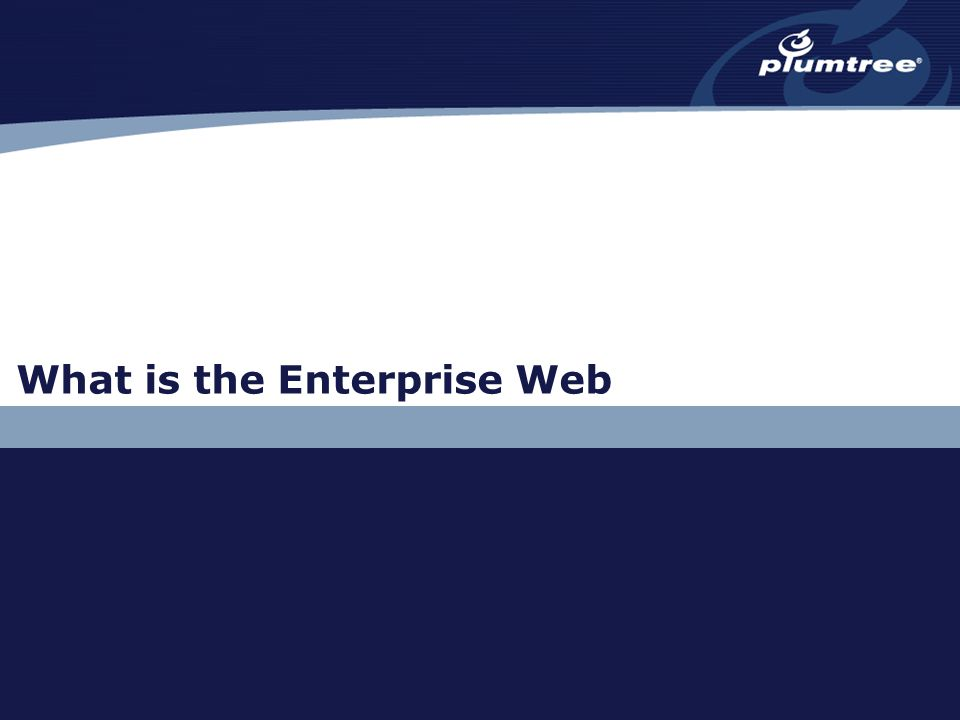 What is the Enterprise Web