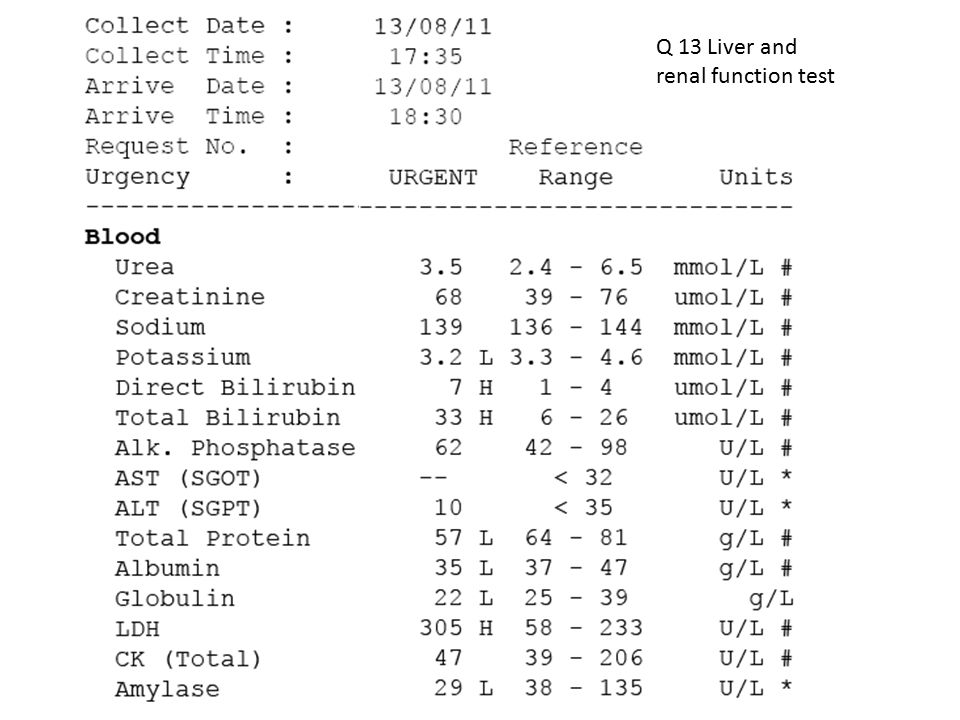 Q 13 Liver and renal function test