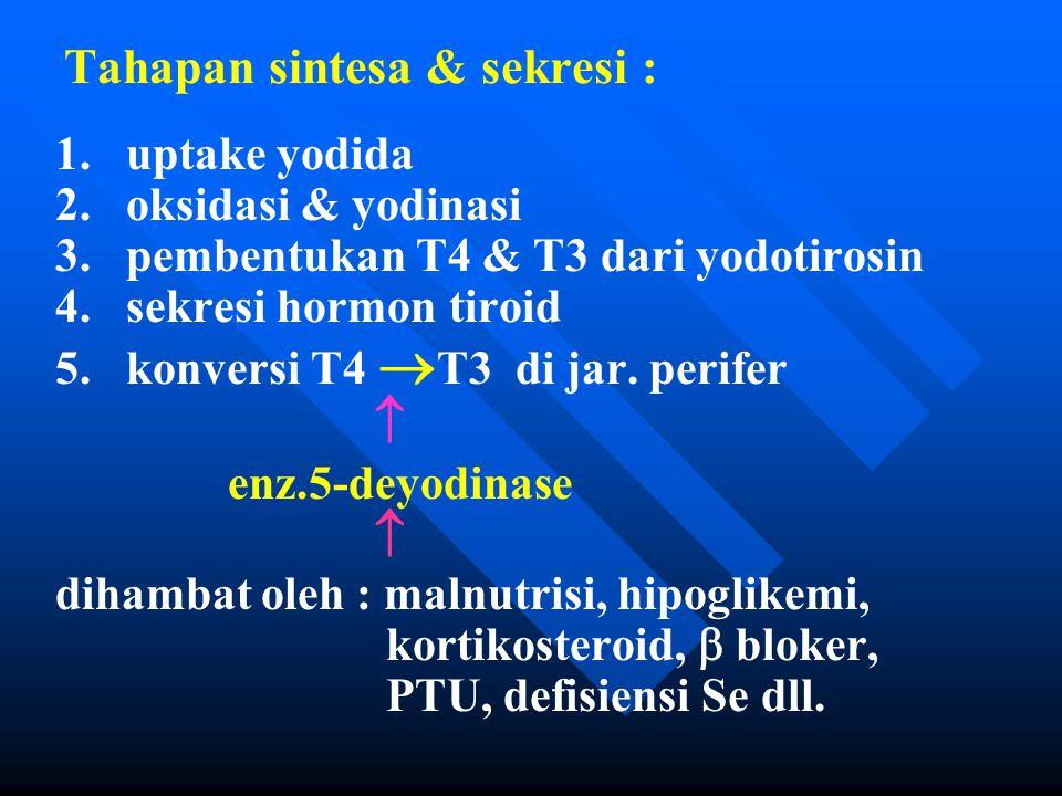 Tahapan sintesa & sekresi : 1. 1.uptake yodida 2.