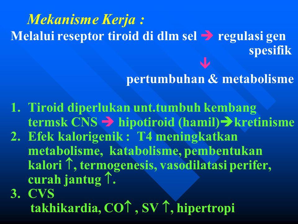 Mekanisme Kerja : Melalui reseptor tiroid di dlm sel  regulasi gen spesifik  pertumbuhan & metabolisme 1.