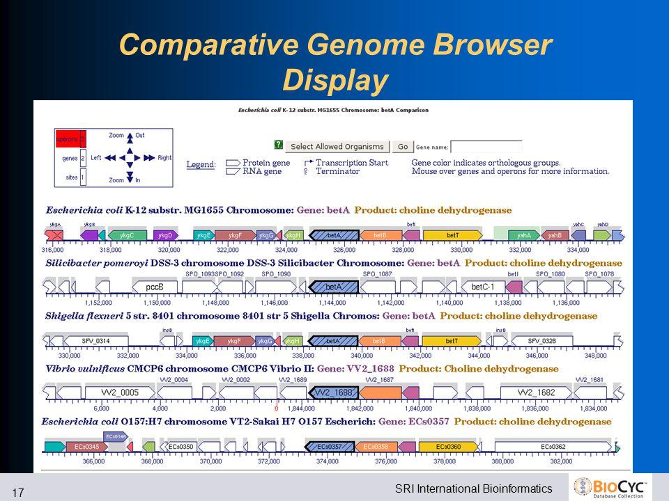 SRI International Bioinformatics 17 Comparative Genome Browser Display