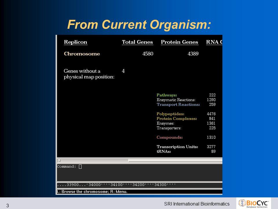 SRI International Bioinformatics 3 From Current Organism:
