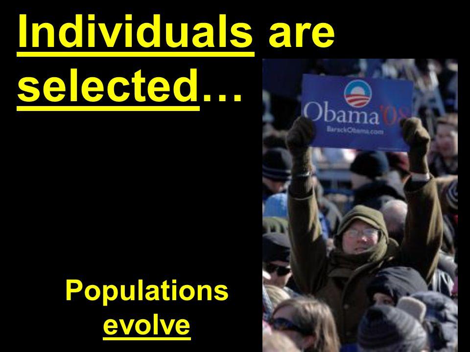 Chpt. 23 The Evolution of Populations-- Population Genetics