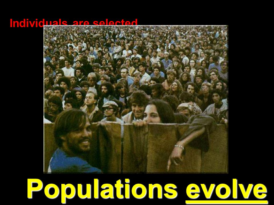 Individuals are selected… Populations evolve