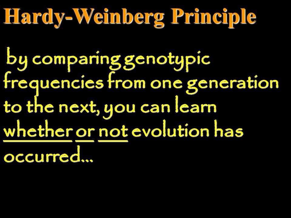 Hardy-Weinberg Principle 2pq = # of Aa individuals 2pq = frequency of heterozygote individuals