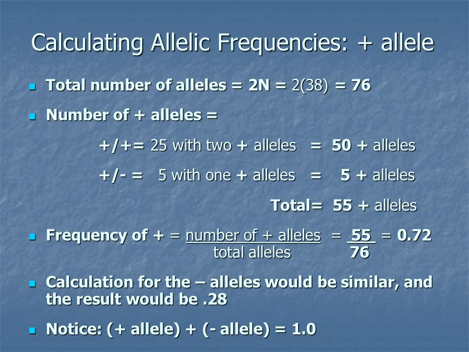 Calculating Allelic Frequencies: + allele Total number of alleles = 2N = 2(38) = 76 Total number of alleles = 2N = 2(38) = 76 Number of + alleles = Nu