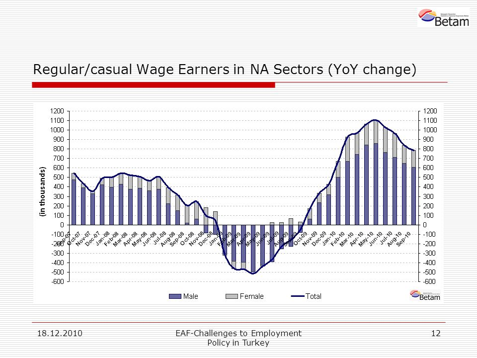 18.12.2010EAF-Challenges to Employment Policy in Turkey 12 Regular/casual Wage Earners in NA Sectors (YoY change)