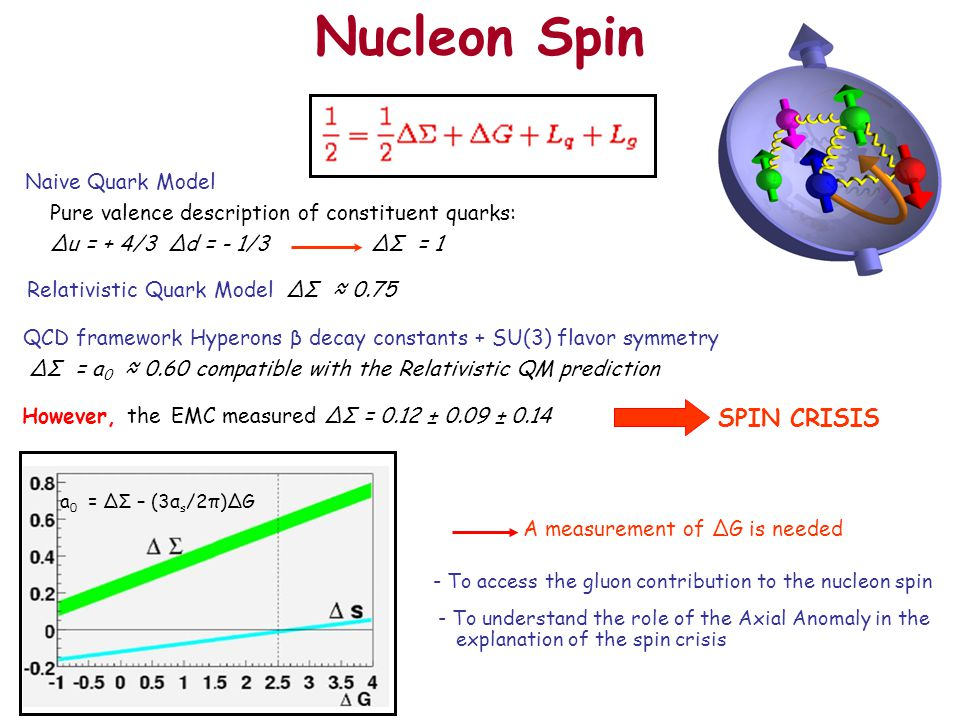 - To access the gluon contribution to the nucleon spin - To understand the role of the Axial Anomaly in the explanation of the spin crisis Nucleon Spin Naive Quark Model Pure valence description of constituent quarks: ∆u = + 4/3 ∆d = - 1/3 ∆Σ = 1 Relativistic Quark Model ∆Σ ≈ 0.75 QCD framework Hyperons β decay constants + SU(3) flavor symmetry ∆Σ = a 0 ≈ 0.60 compatible with the Relativistic QM prediction However, the EMC measured ∆Σ = 0.12 ± 0.09 ± 0.14 SPIN CRISIS a 0 = ΔΣ – (3α s /2π)ΔG A measurement of ∆G is needed