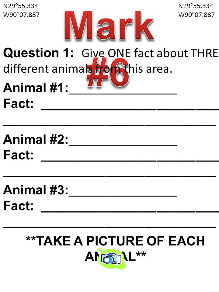 N29  55.334 W90  07.887 N29  55.334 W90  07.887 Question 1: Give ONE fact about THREE different animals from this area.