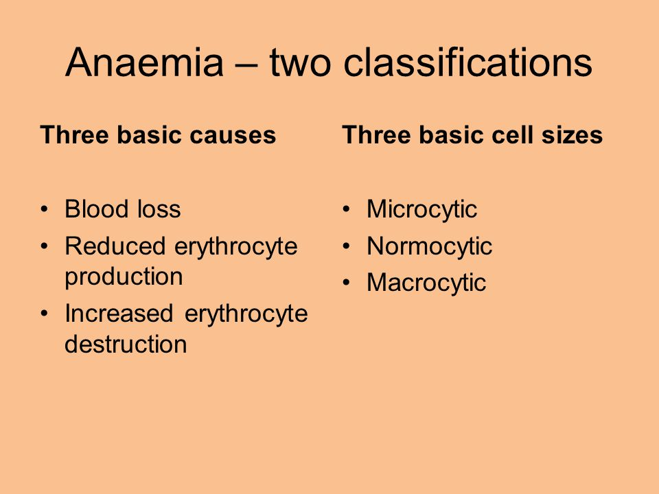 Anaemia – two classifications Three basic causes Blood loss Reduced erythrocyte production Increased erythrocyte destruction Three basic cell sizes Microcytic Normocytic Macrocytic
