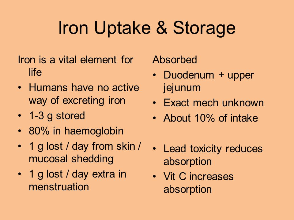 Iron Uptake & Storage Iron is a vital element for life Humans have no active way of excreting iron 1-3 g stored 80% in haemoglobin 1 g lost / day from skin / mucosal shedding 1 g lost / day extra in menstruation Absorbed Duodenum + upper jejunum Exact mech unknown About 10% of intake Lead toxicity reduces absorption Vit C increases absorption