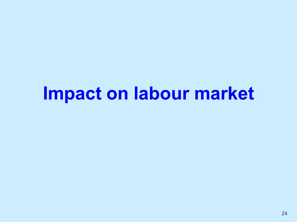24 Impact on labour market