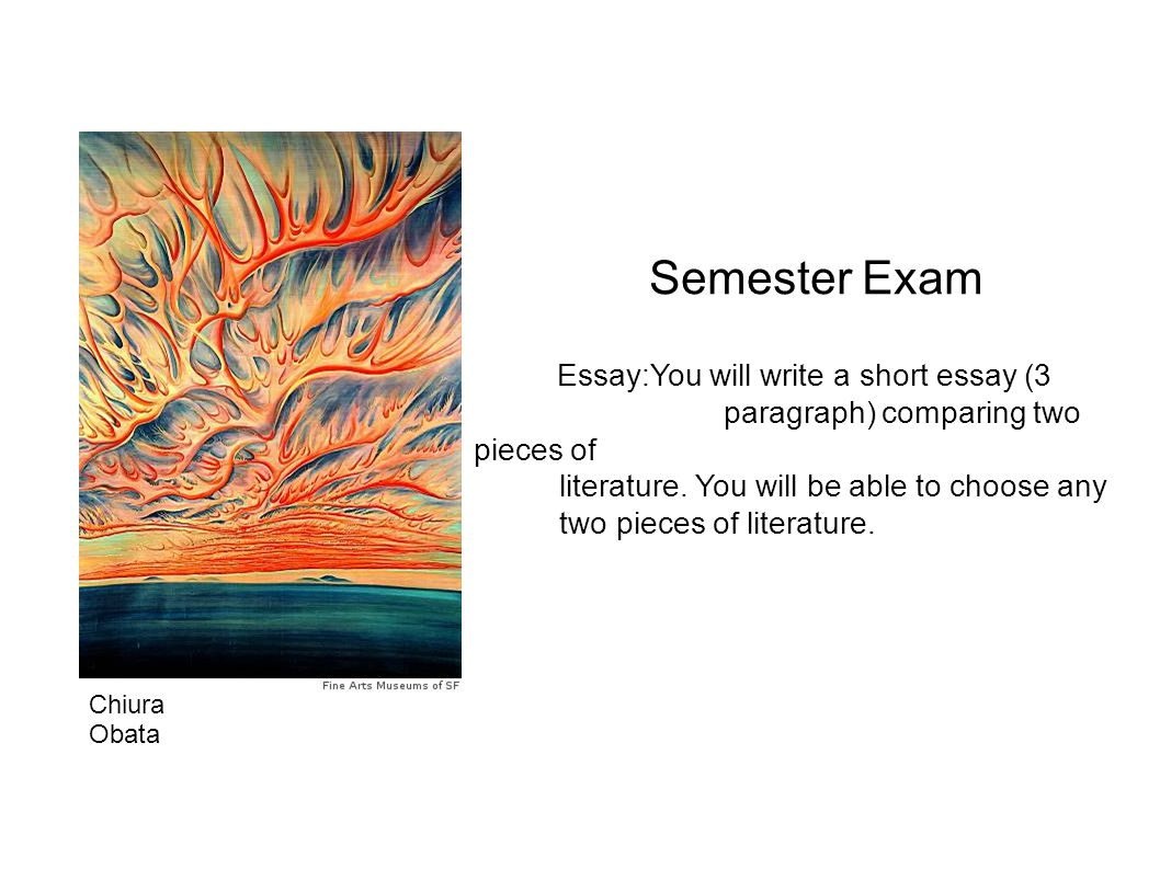 Semester Exam Essay:You will write a short essay (3 paragraph) comparing two pieces of literature. You will be able to choose any two pieces of litera